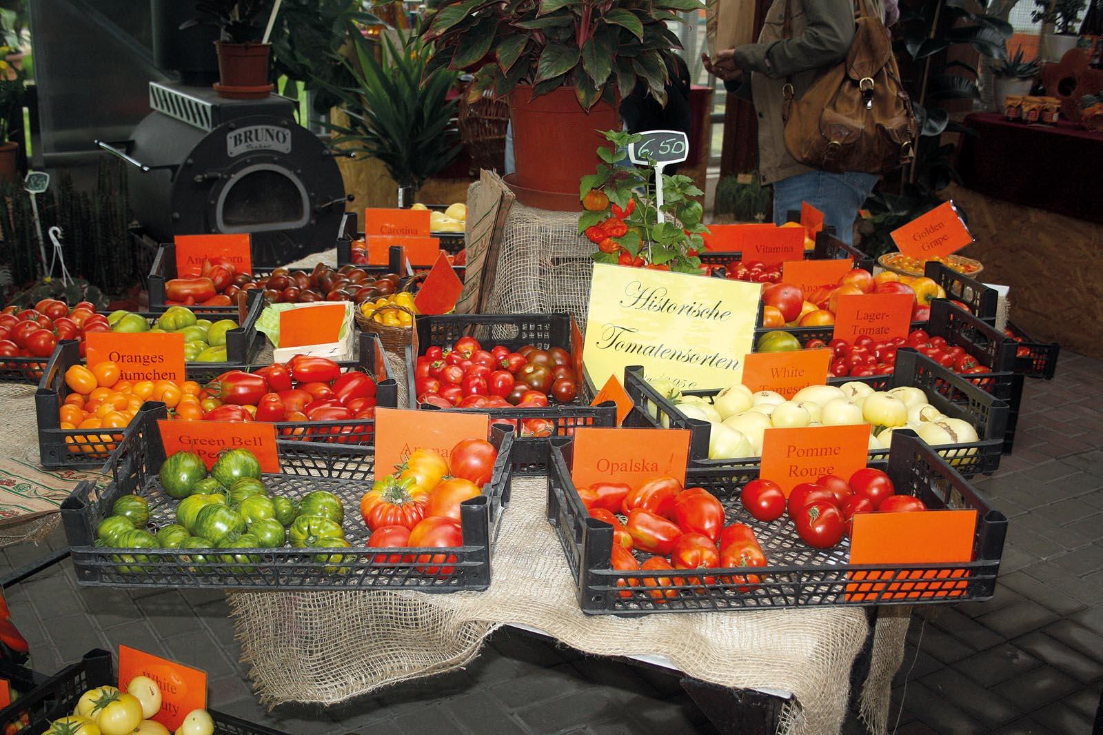 tomaten unbekannte seiten einer vermeintlich bekannten frucht k s magazin. Black Bedroom Furniture Sets. Home Design Ideas