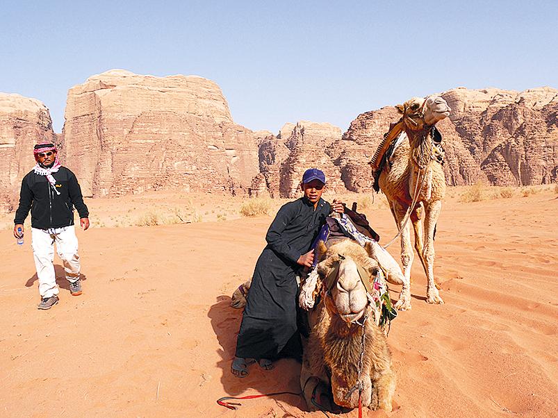kamel_arabien